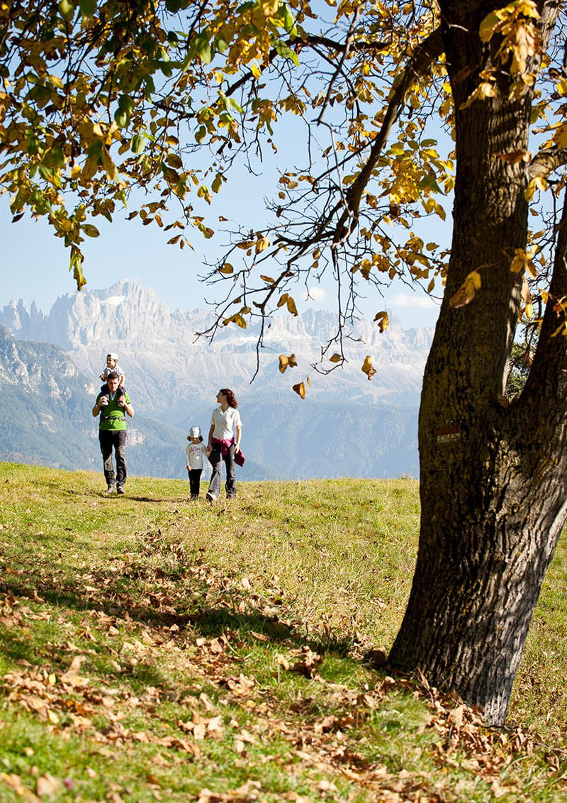 Autunno in Val d'Adige